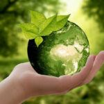 Real World Sustainability In 2021